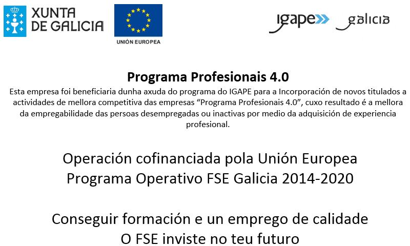 IG256 Profesionales 4.0